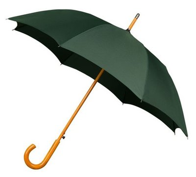 Falcone Deluxe windproof paraplu groen
