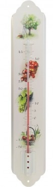 TFA Fruit analoge thermometer