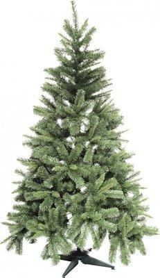 Cosy Colorado Pine kerstboom 240 cm