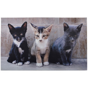 Esschert Design Kittens deurmat